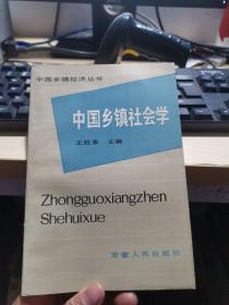 中国乡镇社会学