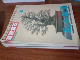 花木盆景 盆景赏石版 2006年第2-12期,11本合售G