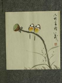 【保真】王成老师国画精美小花鸟  画工精湛 栩栩如生 人见人爱  物美价廉 编号010282