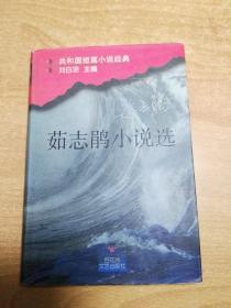 茹志娟小说选(32开精装)