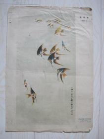 1973年八开宣传画:黄独峰作热带鱼