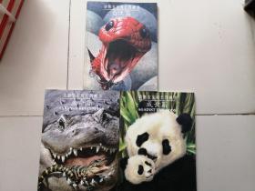 动物宝宝成长图画书 【 生命篇 ;成长篇;自立篇 3本合售】
