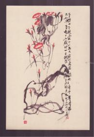 1956年老画片  牵牛花 齐白石作