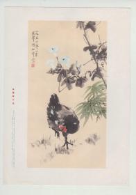 1957年一版一印《鸟鸡牵牛花》独立画片, 陈松平作  ,16开   上海画片出版社
