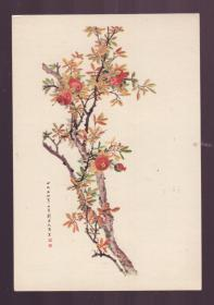 1956年老画片 石榴 刘子久作
