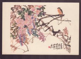 1956年 老画片 紫藤 诸乐三作