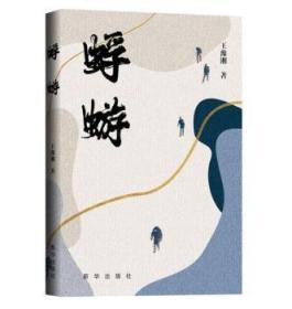 蜉蝣9787516658147 王豫湘新华出版社众木丛林图书