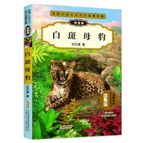 动物小说大王沈石溪精品集(拼音版):白斑母豹