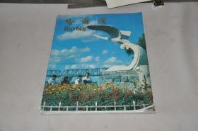 85年 哈尔滨 画册,老图片多。