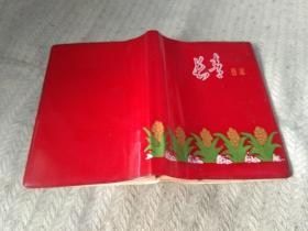 日记本  笔记本 长春日记  已经挤满养生笔记  50开