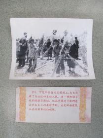 1959年,为庆祝新中国成立十周年而发行的【祖国十年建设成就】之181宁夏回族农民在收割胡麻 尺寸:约20厘米*15厘米