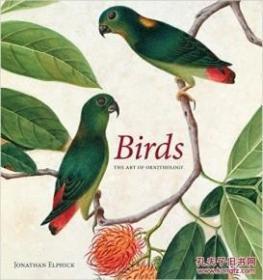 现货Birds: The Art of Ornithology