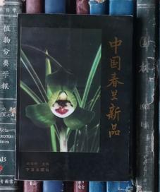 中国春兰新品