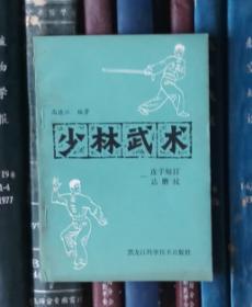 少林武术 ——连手短打 达摩杖