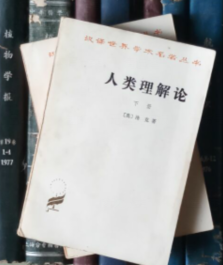 汉译世界学术名著丛书:人类理解论(上下)