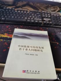 中国能源可持续发展若干重大问题研究