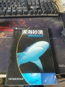 深海妙境:神秘的海底生灵