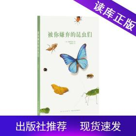 读小库14岁懂社会系列文库本被你嫌弃的昆虫们12岁以上青少年自然科普百科儿童书