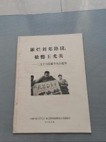 文革  枪毙王光英 (二月十六日批斗大会纪实)