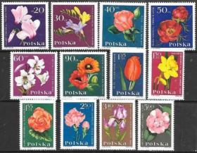 【集邮收藏 波兰1964年花卉 玫瑰 郁金香 月季花德国12全】