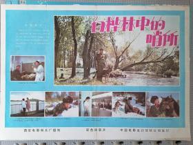 对开电影海报宣传画《白桦林中的哨所》(卢君  韩月乔 王滨雁)
