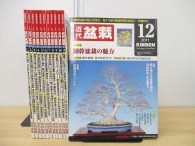 月刊 盆栽杂志  全年12期  12册   2011年  近代出版  品好包邮