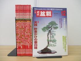 月刊 盆栽杂志  全年12期  12册   2004年  近代出版  品好包邮