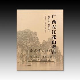 广西左江花山考古2013~2016(全三册)【全新现货 未拆封】