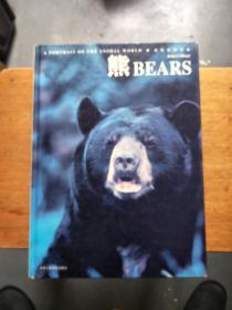 动物世界写真:熊(品相见图和描述)