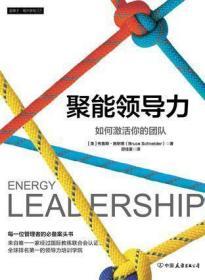 聚能领导力:如何激活你的团队
