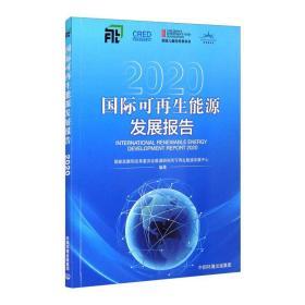 国际可再生能源发展报告2020
