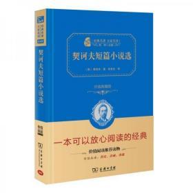 二手正版 经典名著 大家名译:契诃夫短篇小说选(价值典藏版)9787100123211