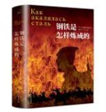 二手正版 钢铁是怎样炼成的(经典随身读)[苏]尼·奥斯特洛夫斯基 民主与建设出版社  9787513918268