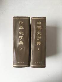 中华大字典 上下册