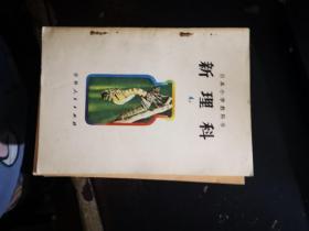 日本小学教科书  新理科:4上