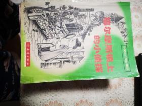福尔摩斯镇上的小侦探(中国当代奇妙)