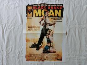【海报】Black Snake Moan(黑蛇呻吟)