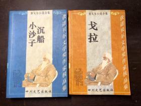 泰戈尔小说全集(A卷B卷 2册合售)戈拉、沉船·小沙子  馆藏
