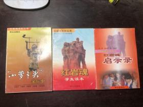 红岩魂系列丛书(3册合售)小萝卜头宋振中、红岩魂启示录、红岩魂学生读本
