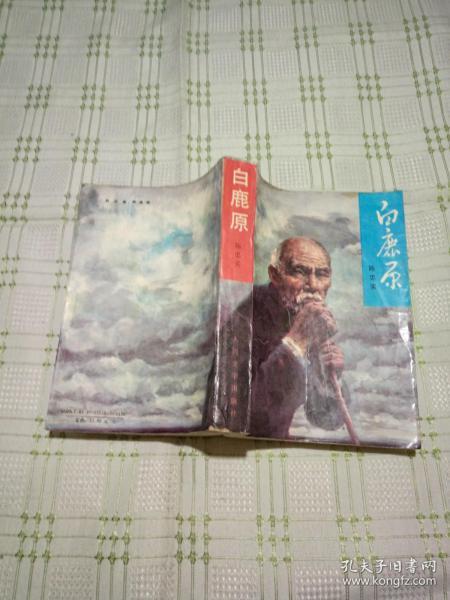 白鹿原 (1993年1版2印 陈忠实代表作 茅盾文学奖)