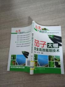 茄子大棚安全高效栽培技术