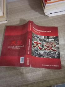 大爱:四川省国税系统抗震救灾纪实