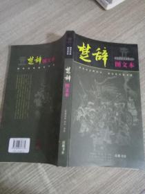 楚辞  图文本