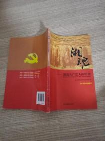 湘魂:湖南共产党人的精神(小学高年级版)
