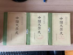 中国文学史  第一、二、三册