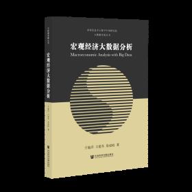 宏觀經濟大數據分析                                大數據發展叢書                 于施洋 王建冬 易成岐 著