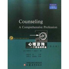 【新华书店】心理咨询—一个综合的职业