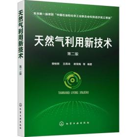 【新华书店】天然气利用新技术  2版