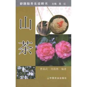 【新华书店】山茶