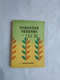 农村集体经济发展与基层组织建设